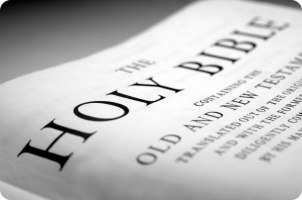 bible(8)